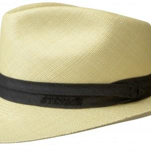 Chapeau Panama Jenkins Stetson nature