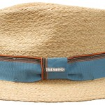 Chapeau Smith Raffia Stetson nature