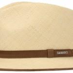 Chapeau Panama Braid Stetson beige