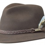 Chapeau Traveller Newark Stetson marron
